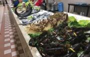 4-san-benedetto-markt-cagliari-kulinarisch